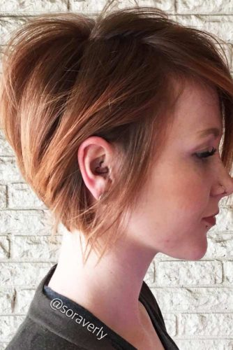 Pixie-Bob with Layers