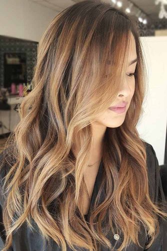Sun Kissed Brown Balayage picture3