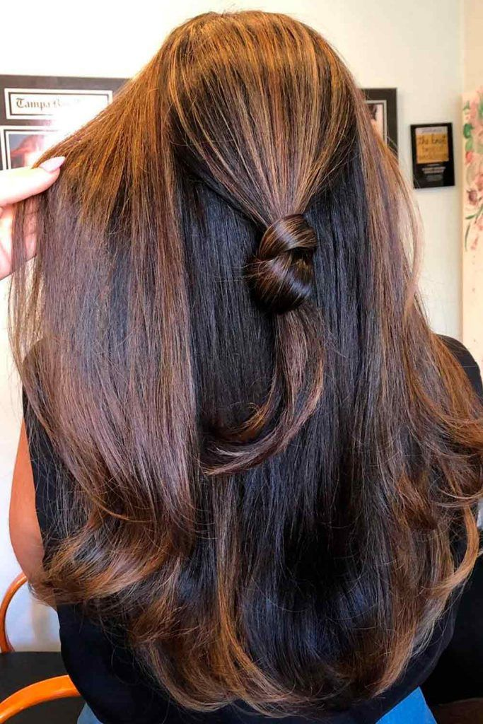 Black With Chestnut Brown Highlights