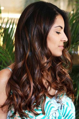 Black With Chestnut Brown Highlights #chestnuthair #brownhair #highlights