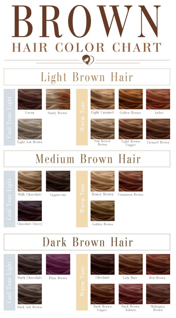 Brown Hair Color Palette New Chart Colors Pinterest