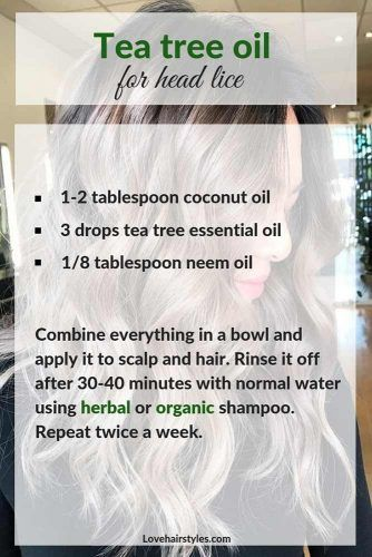 Tea Tree Oil To Get Rid Of Head Lice #hairtreatments #teatreeoilforhair