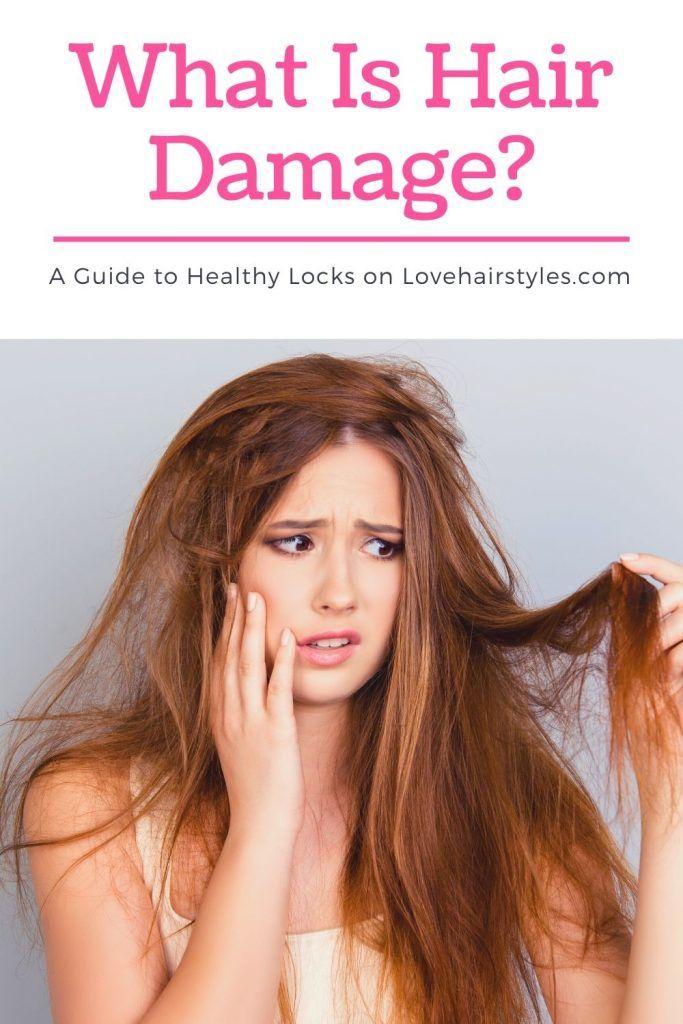 What Is Hair Damage? #damagedhair #hairtreatment