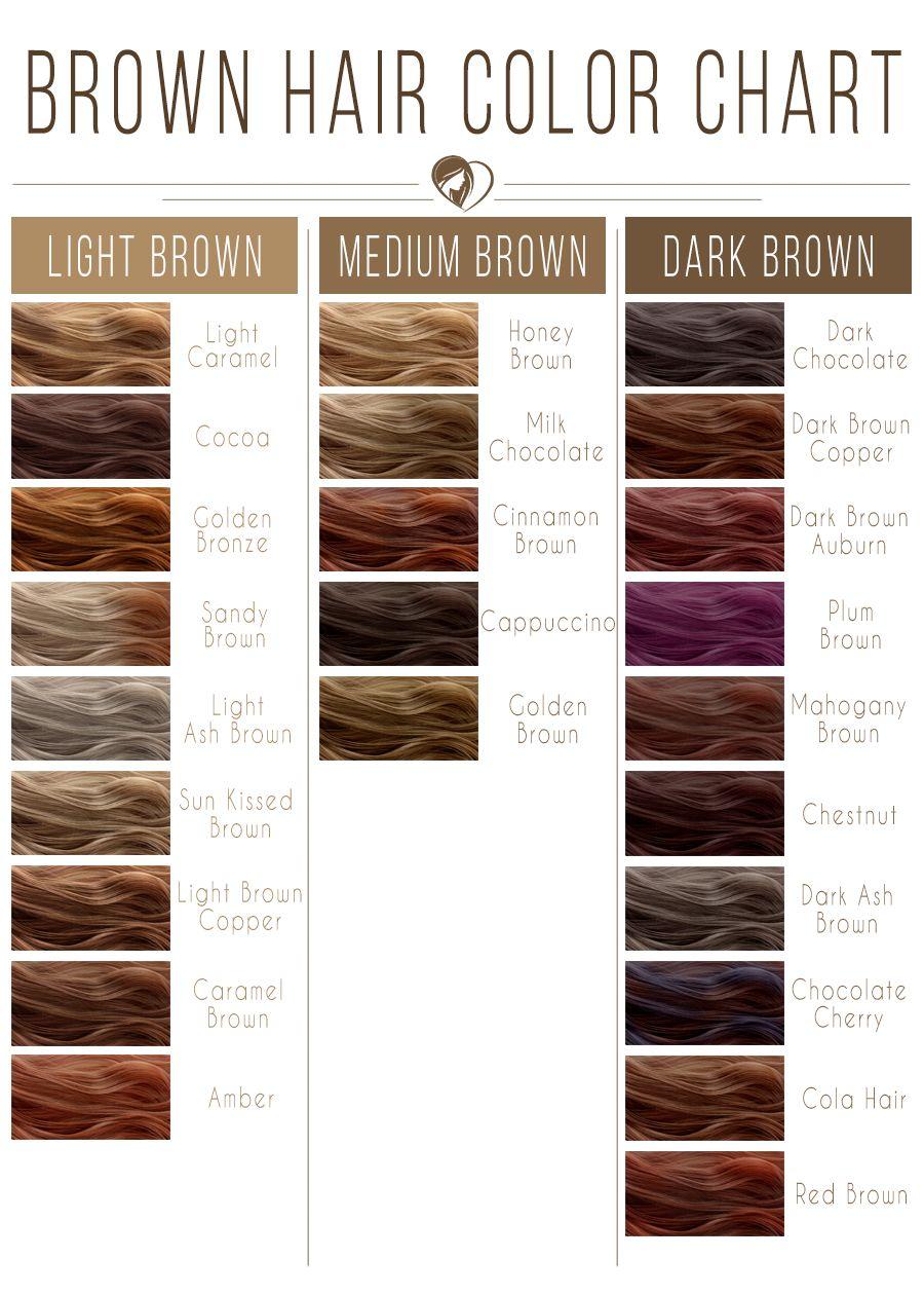 Light Brown Hair Color Chart #brownhair #brunette
